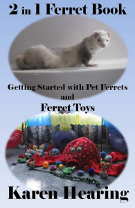 New Ferret Book